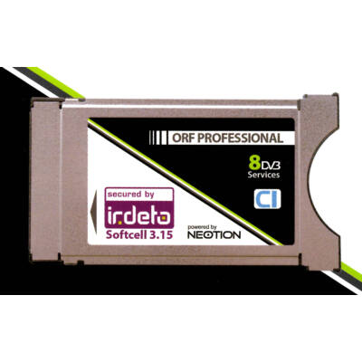 Professional IRDETO CAM 8ch
